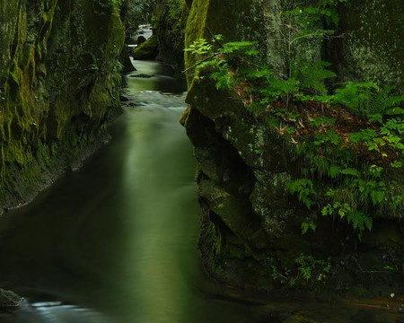 樽前ガローの渓谷