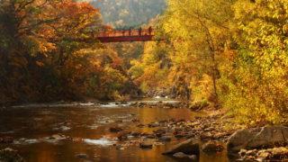 定山渓二見吊橋の紅葉